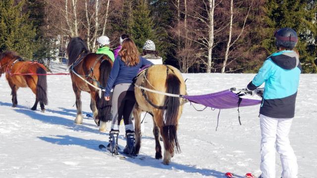 ski joering au Collet