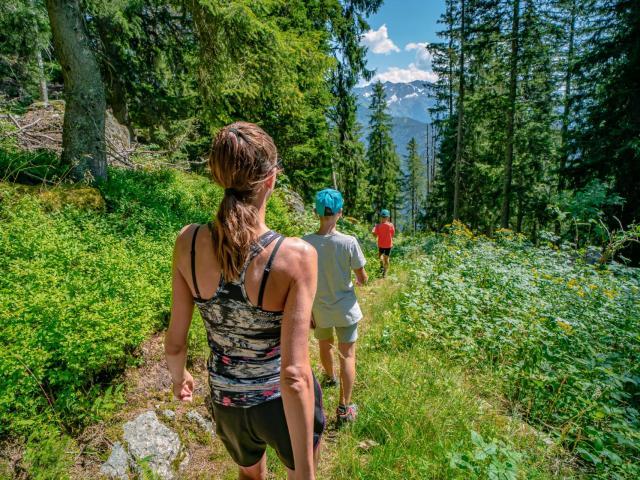 Marche dans la forêt au Collet d'Allevard en été