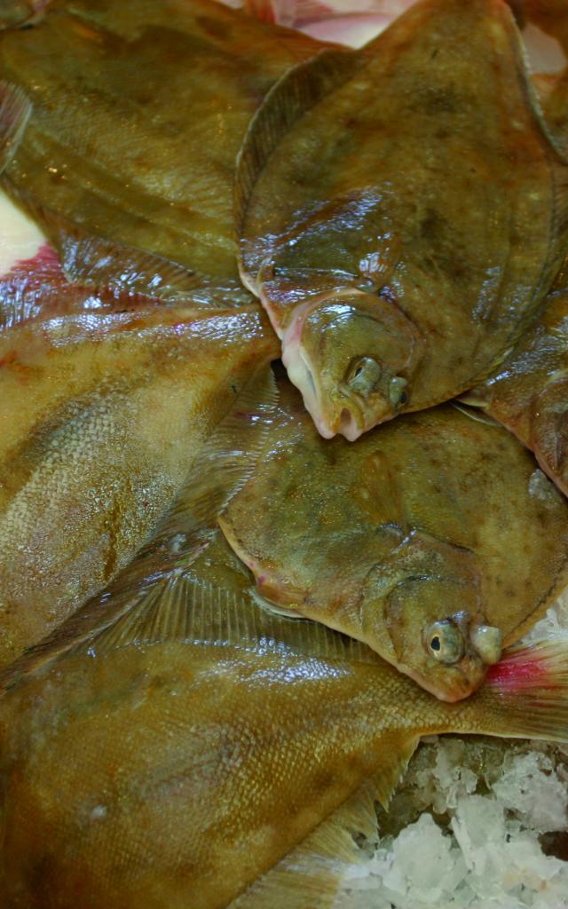POISSONERIE MUNICIPALEplace de la poissonnerie