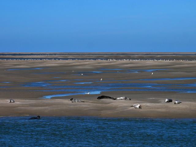 Bay Of Somme 4508723 1920