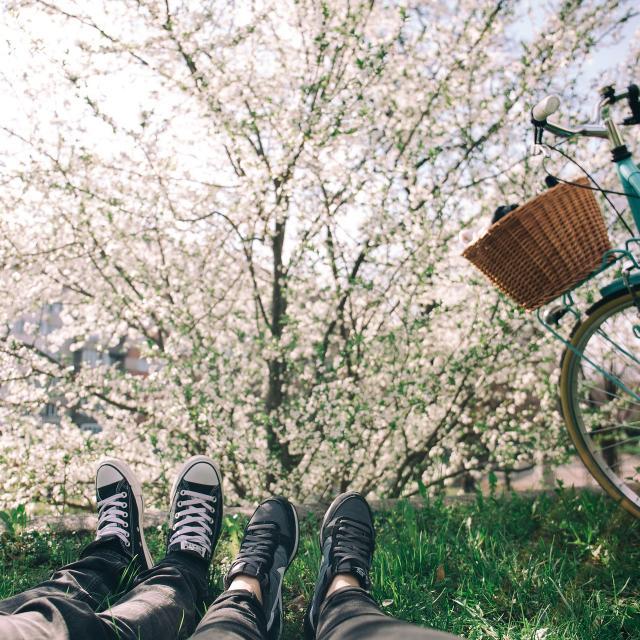 bicycle-1840922-1920.jpg