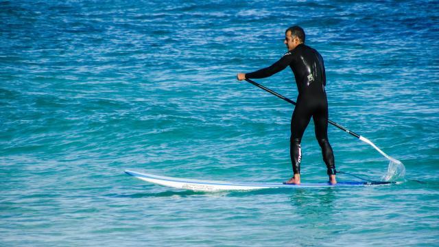 paddleboarding-1973035-1920.jpg