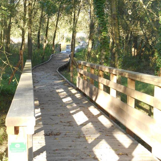 Passage Bois