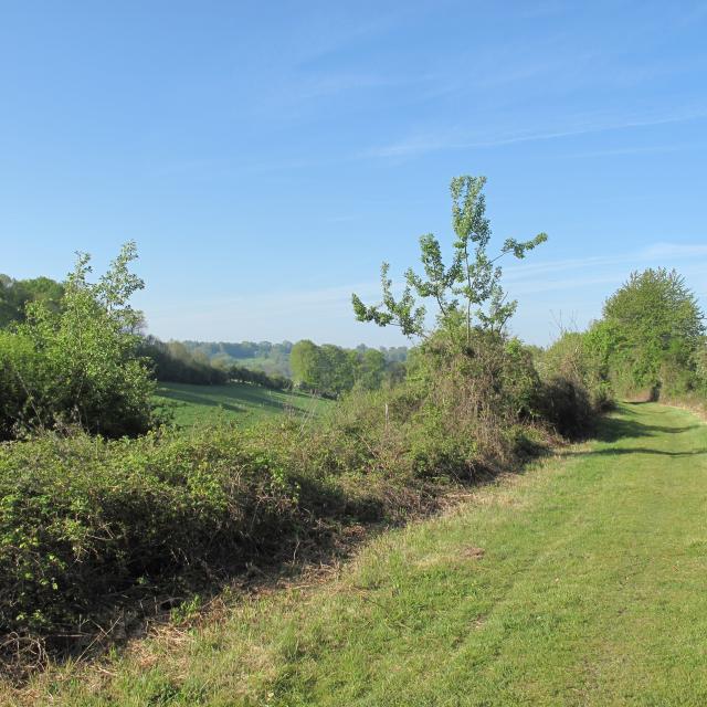Paysage Vallée Tronçon St Rémy Boscrocourt Touffreville (2) New1