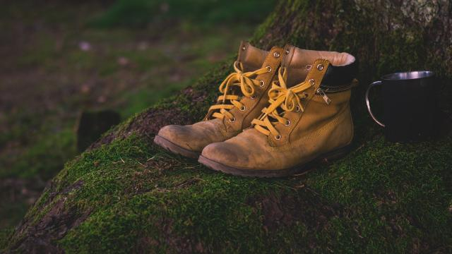 shoes-1638873-1920.jpg