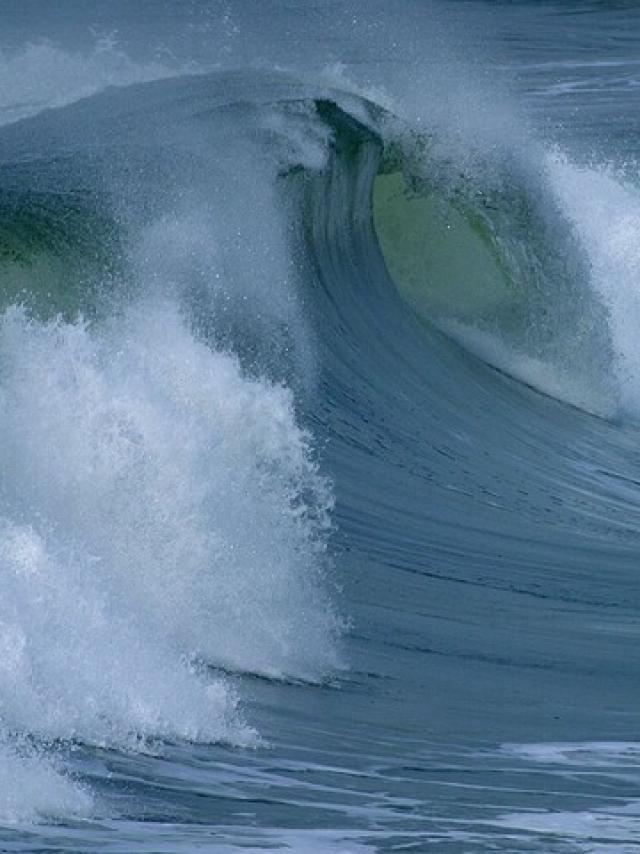water-roller-3645-640.jpg