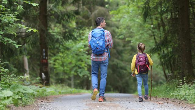 Randonnées en forêt en famille