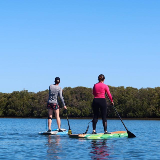 Paddle sur les étangs
