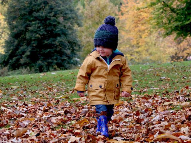 Enfant marchant sur les feuilles mortes