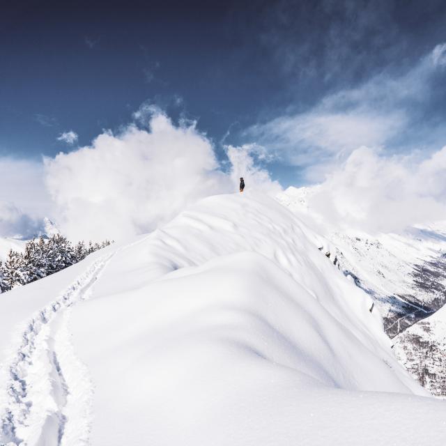 Moment de contemplation au sommet lors d'une journée Ski et snowboard aux Deux-Alpes
