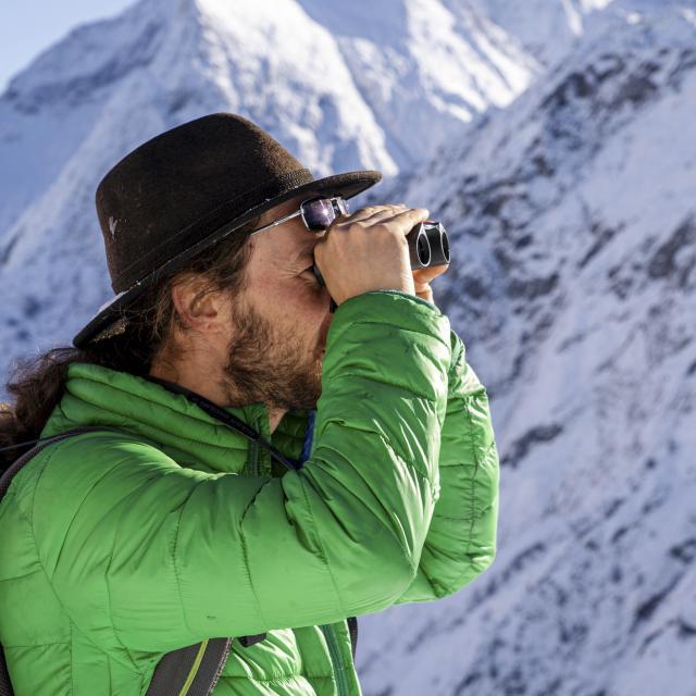 Observation aux jumelles d'un guide de haute montagne lors d'une sortie raquettes au