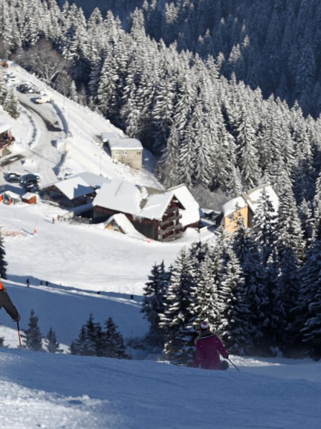 skieur-7-laux-pleynet