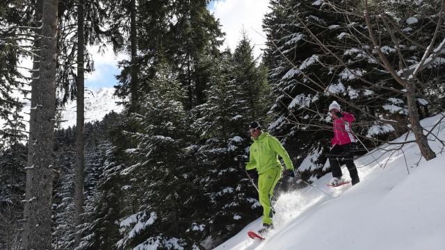 7-laux-ski-raquettes