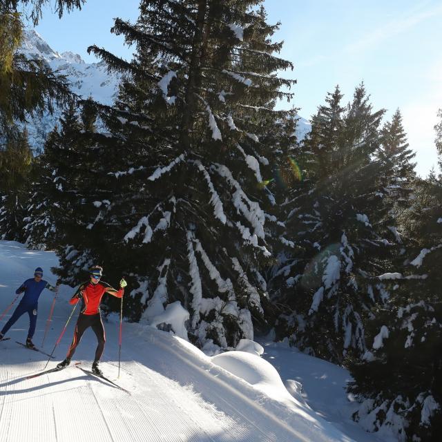 7-laux-ski-nordique -prapoutel