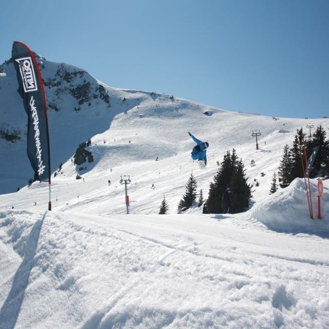 7-laux-oakley-snowpark