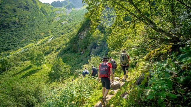 randonnée en forêt en montagne aux 7 Laux