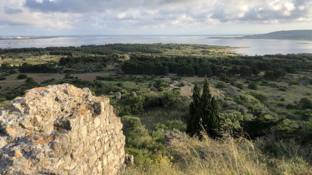 Vue sur l'étang et les parcs à huîtres depuis le Chateau de Leucate