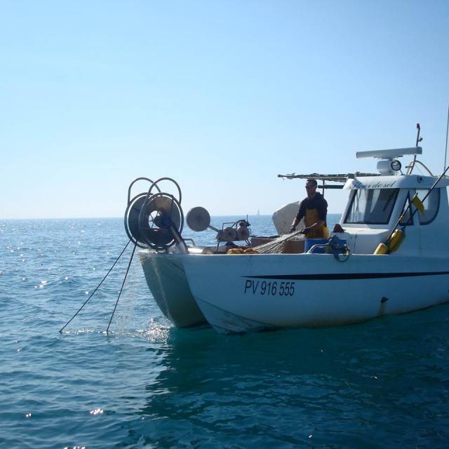 Pescatourisme Erwan Berton Pecheur en mer