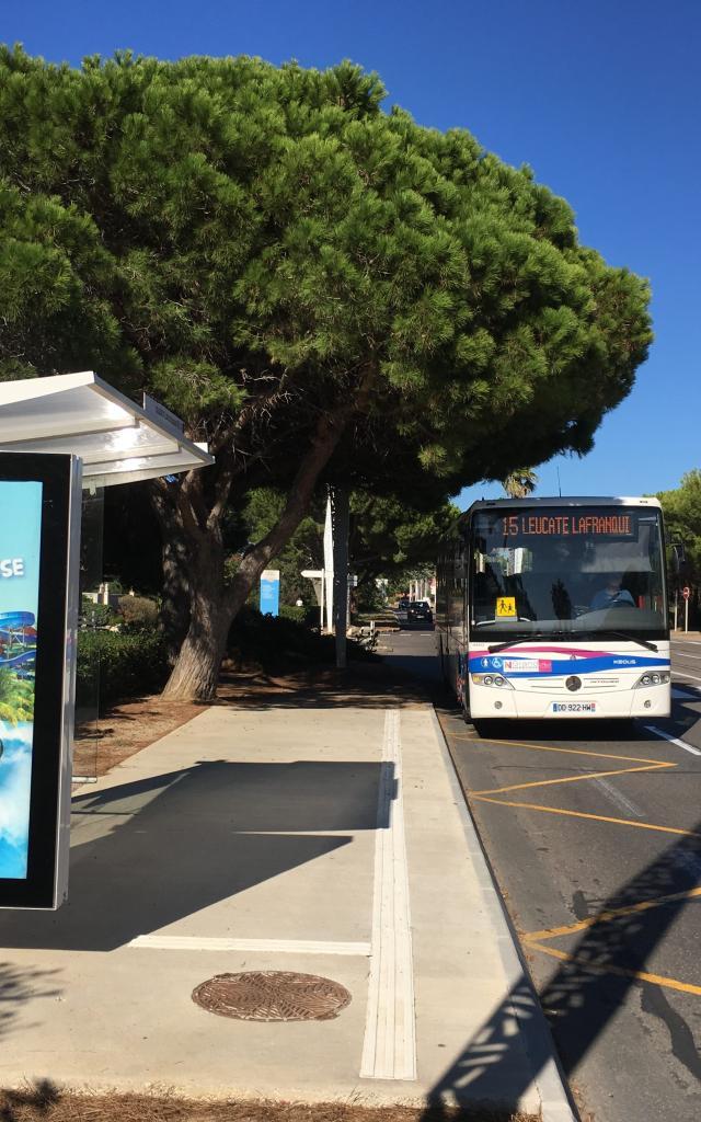 Port Leucate Bus College