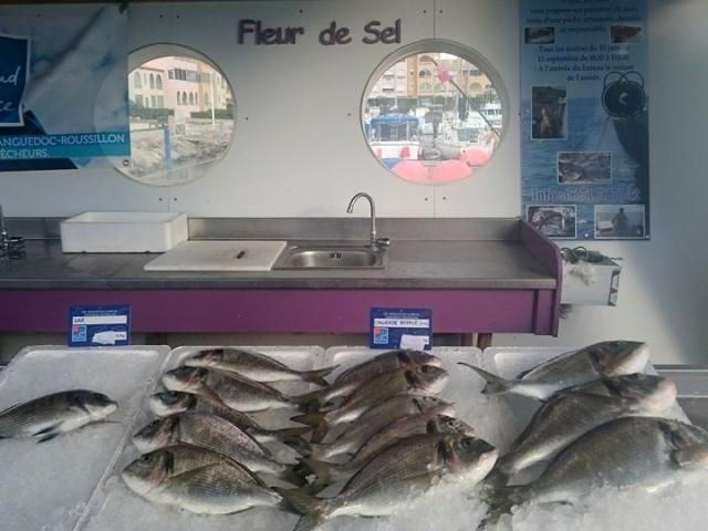 Etal de poissons sur le quai des pêcheurs