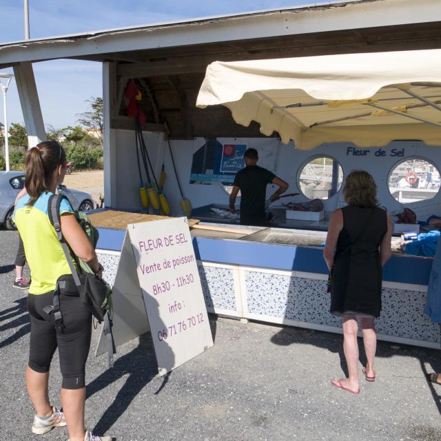 Photo de poissons sur les stands du marché aux poissons de Port Leucate