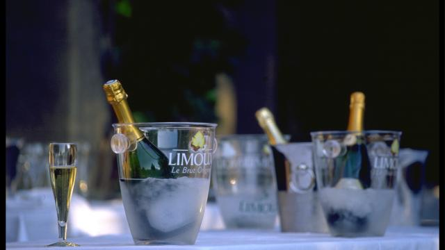 Ot Limouxin Site Internet (25)