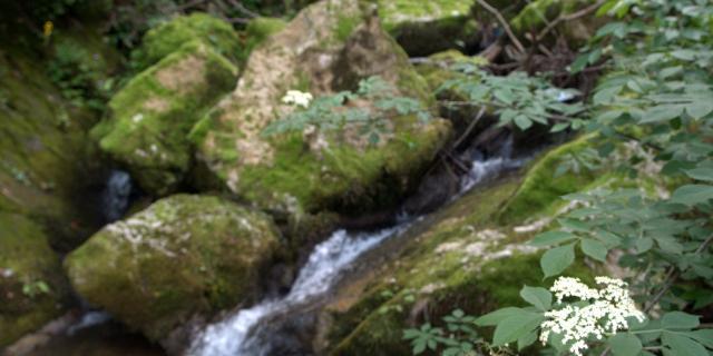Cascade de Fourtou