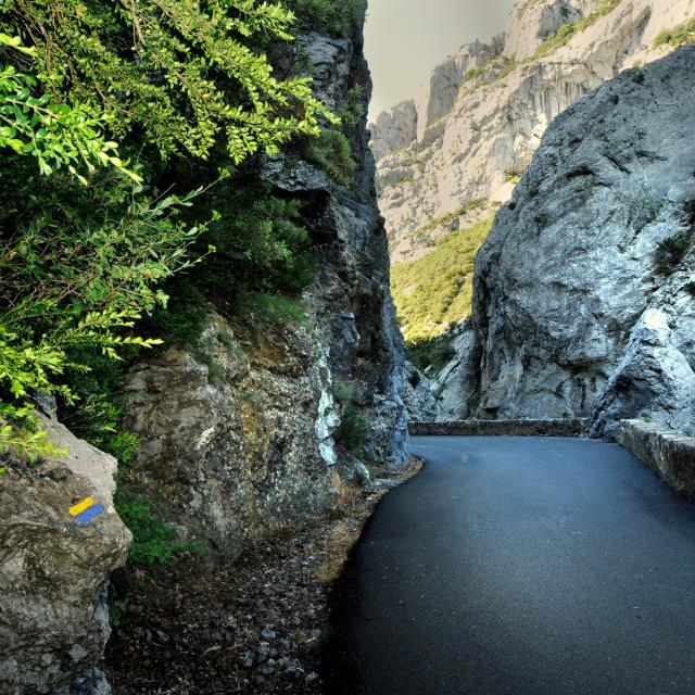 Route des gorges de Galamus_© Jean Louis Socquet