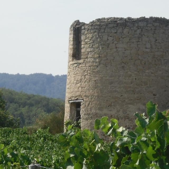 Moulin Villelongue d'Aude