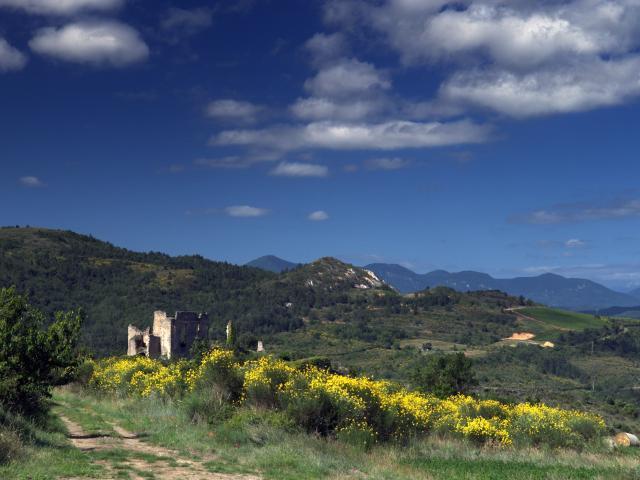 Château Paysage Coustaussa
