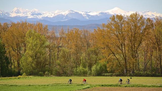 Les Pyrénées Depuis La Malepeyre ©le Cyclo Club De Limoux