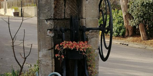 Bellegarde-du-Razès