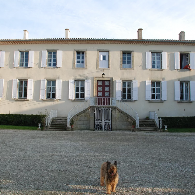 Château de Belvèze