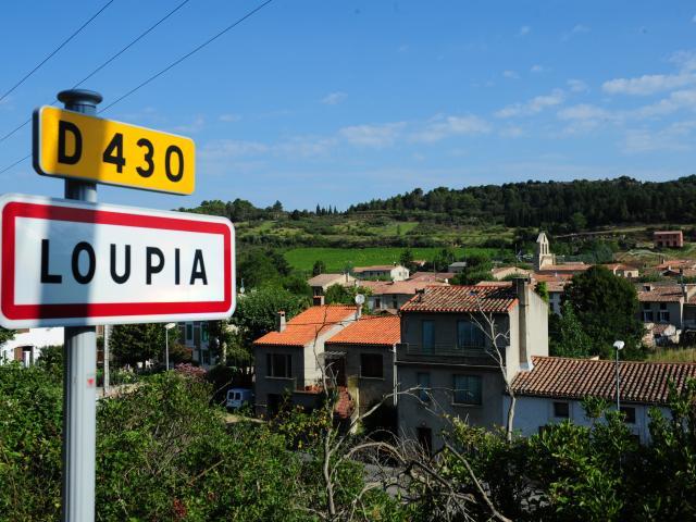 Loupia
