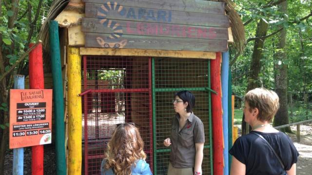 Safari Des Lémuriens Zoo Cerza Lisieux