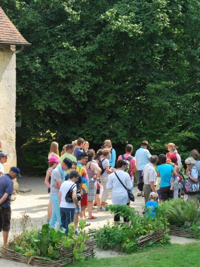 visite-thtralise-groupe-chateau-de-crvecoeur.jpg