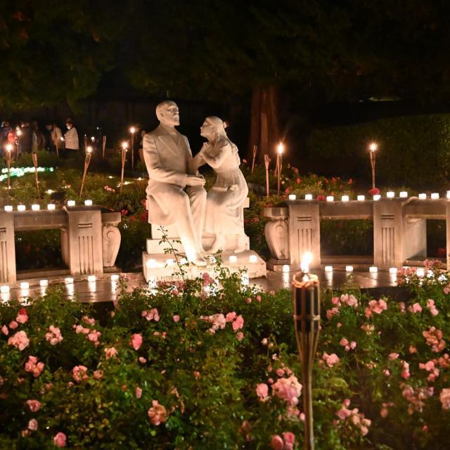 Buissonnets De Nuit©sanctuairedelisieux