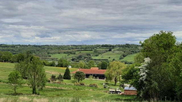Vue sur le campagne Normande à Ouilly le Vicomte