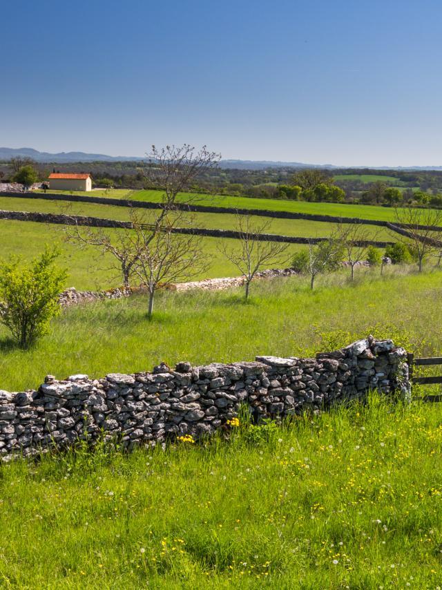 Murets de pierres sèches à Espédaillac