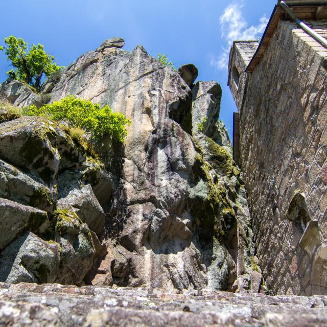 Notre Dame de Verdale
