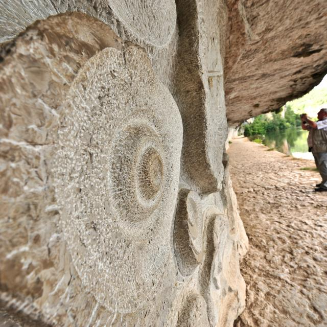 Parois sculptées - Chemin de halage de Ganil à Bouziès