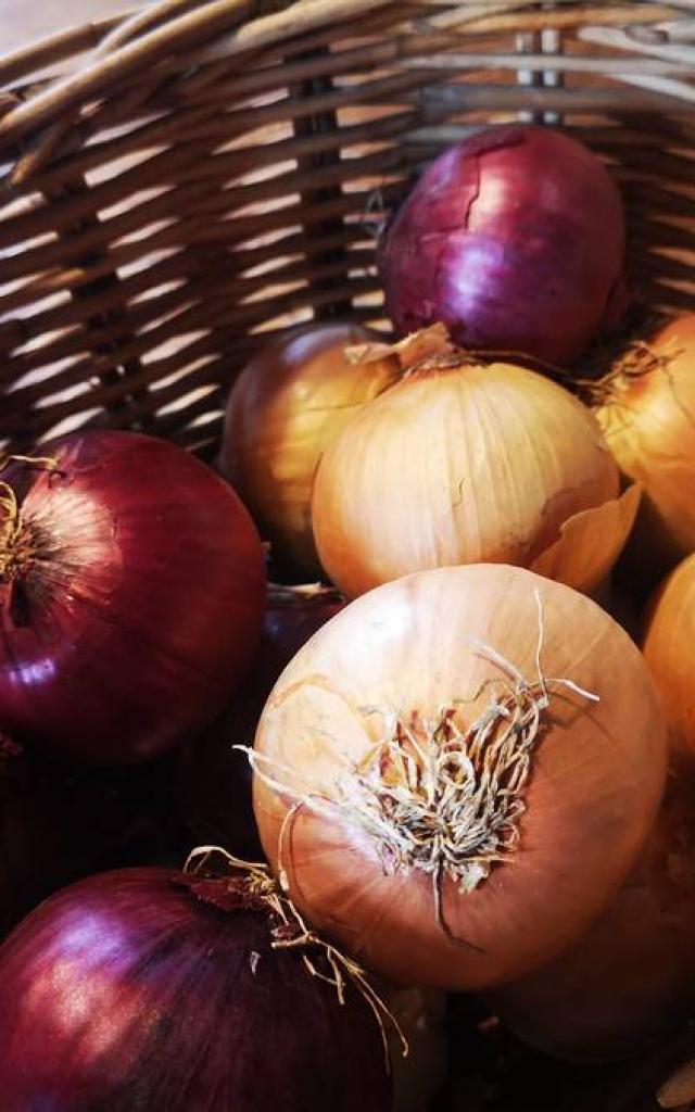 Ingrédient pour le Rocaflette : oignons