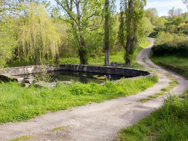 Chemin près de Concots