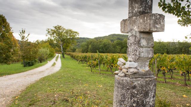 Calvaire et vignes à Caillac