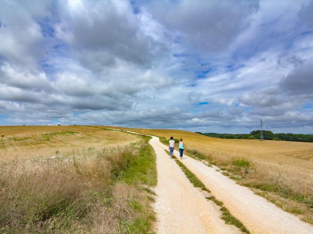 Chemin blanc en Quercy Blanc