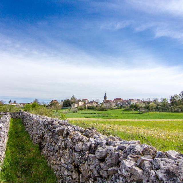 Chemin et murets de pierre sèche à Escamps