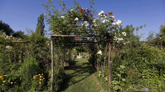 Jardinsdessens2