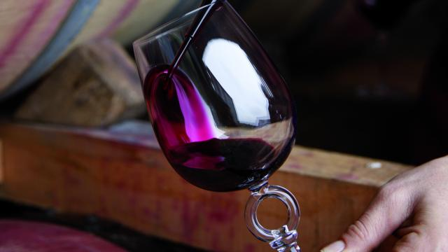 Le Vin De Cahorsuivc48j0160