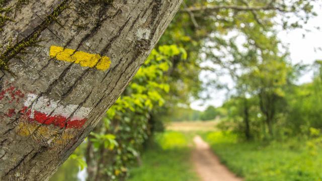 Lot Chemin Halage 10cjdroadtrip