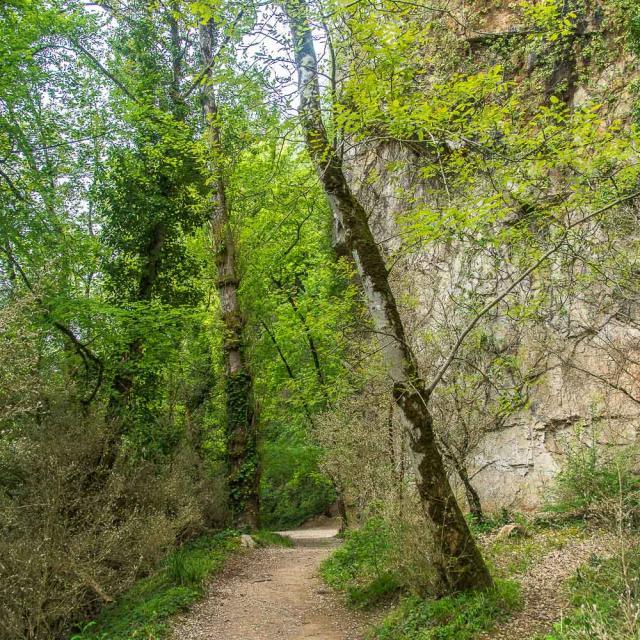 Lot Chemin Halage 4cjdroadtrip